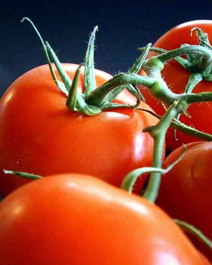 tomatoes-209772_1280-px_opt